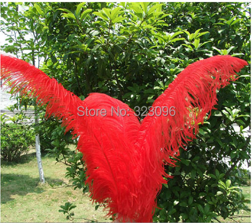 EMS wholesale 20pcs natural red ostrich feathers 26-28inch/65-70cm Wedding centerpiece